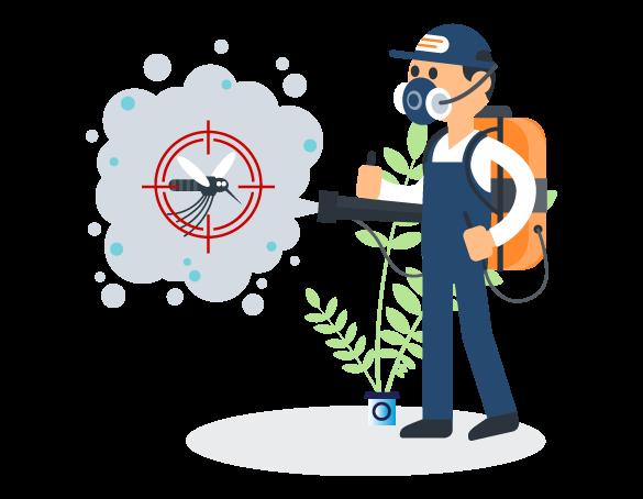 Professional Pest Control Glebe
